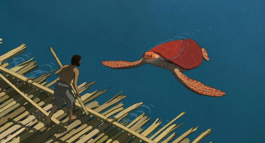tartaruga rossa, Michaël Dudok de Wit, rinascita spirituale, accettazione del destino
