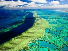 Sezione morta della Great Barrier Reef (Australia), veduta dall'alto
